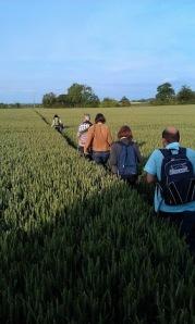 Walking towards Onley. Clifton Reynes. June 2012.