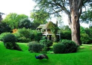 swiss garden